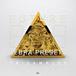 TriSamples-Zebra-Presets-Future-808s-Square-thumb