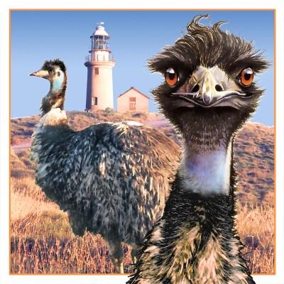 calendar emu