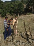 Securing the Plant in Langha Mata Temple