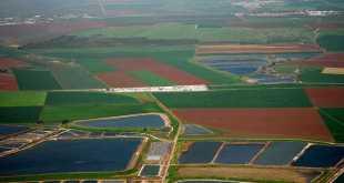 Cánh đồng tại thung lũng Jezreel-Israel