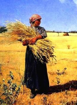 Wheat Gluten Sensitivity Migraine Psoriasis