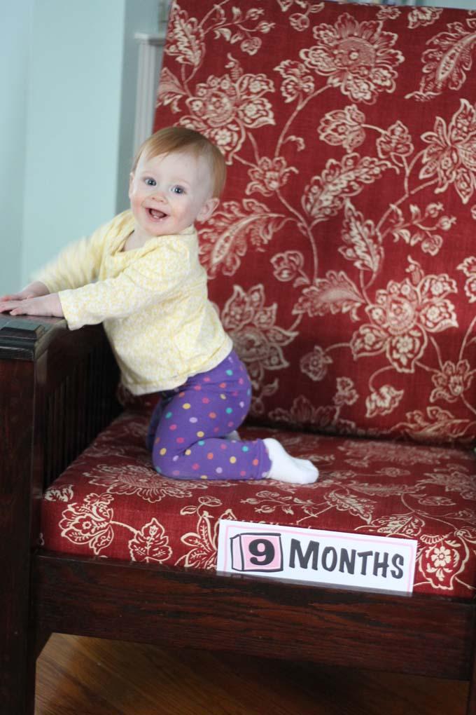 Nine Month Old Eggroll
