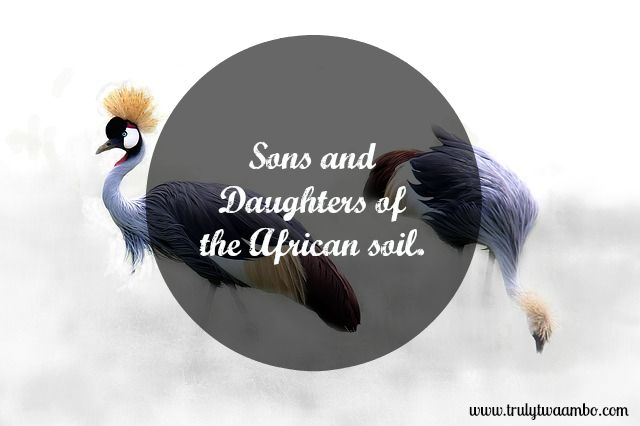 Sons and daughters of the African soil