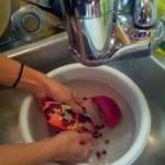 Pomegranates V