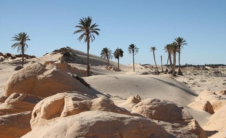 kebili tunisie désert chaleur extreme température