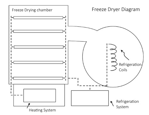 freeze_dryer