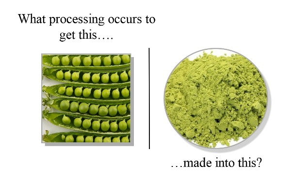 peaprotein