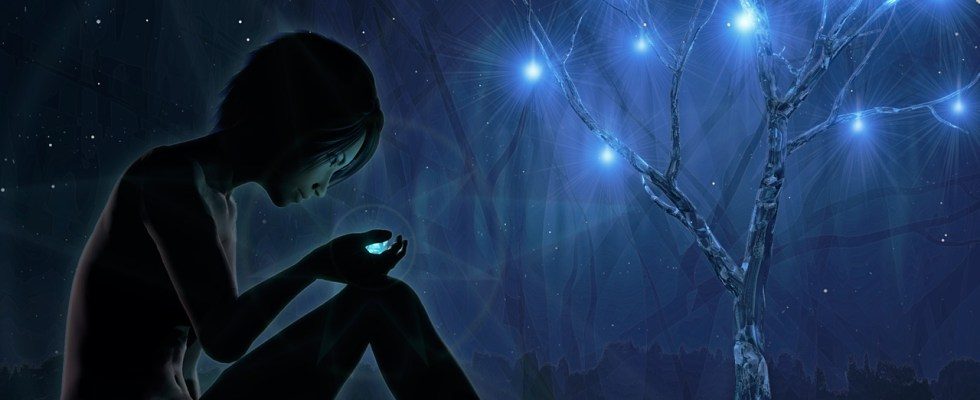 Discover Star Seeds