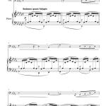 Nocturno (Franz Strauss) - Tuba + Piano