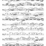25 Etudes de concert cahier 2 (Euhponium)