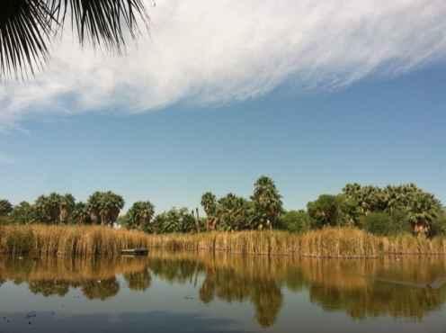 Park Profile: Agua Caliente Park