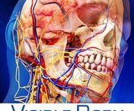 Visible Body: Disfruta de la anatomía con estas apps 3D