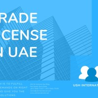 Set Up Your Company in Dubai - for as low as AED8,800