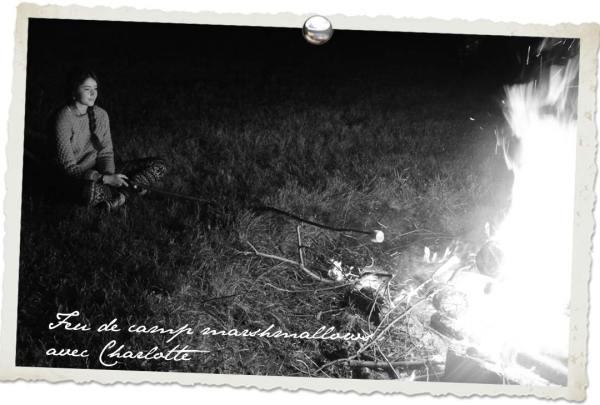Voyage gourmand au Québec : feu de camp et marsmallows grillés