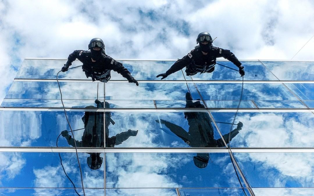 Trabajo en equipo: ¿Cuáles son los roles de toda empresa?
