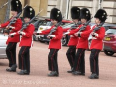 Based on the number and placement of buttons and the color of the plumes on their bearskin hats, we, as experts, knew that these were Welsh Guards, maybe.