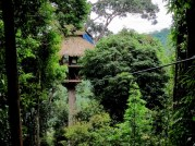 Zipline to the Treehouse, Bokeo Nature Reserve