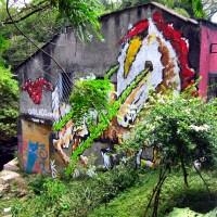 Street Art: Medellin's Voice of the People