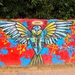 Medellin Graffiti (50)