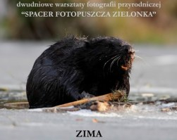 """CYKL WARSZTATÓW FOTOGRAFICZNYCH ,,SPACER FOTOPUSZCZA ZIELONKA""""- EDYCJA ZIMA 8-9 GRUDNIA 2018"""