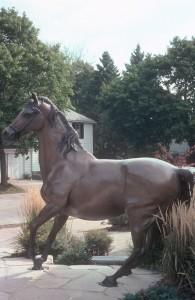 Auction Horse
