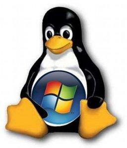 Creando un instalador de Windows 7 desde tu telefono Android con Linux