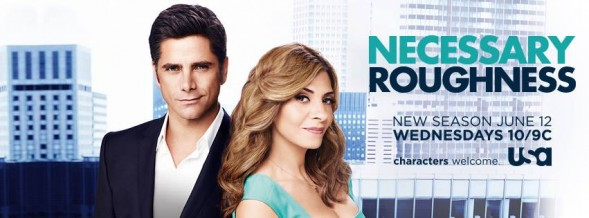 necessary roughness: canceled or renewed?