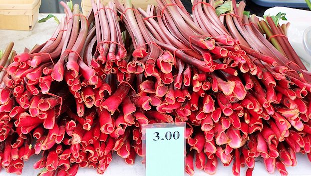 5 Scrumptious Ideas for Rhubarb