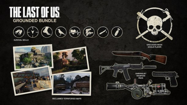 Last of Us grounded bundle