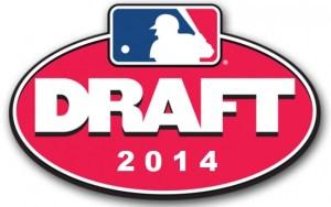 2014 draft logo