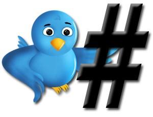 Twitter follower bird