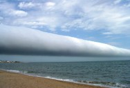 Picture of the Day: Rare Morning Glory RollClouds