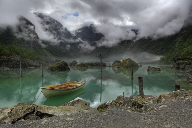 Wikimedia Commons Picture of the Year Contest 2011