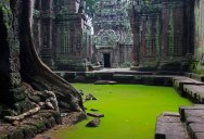 Picture of the Day: Ta Prohm Temple, Cambodia