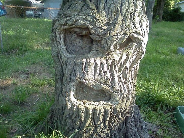 grumpy-tree-get-off-my-lawn