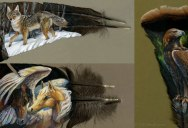 Incredible Feather Art by Kate MccGwire