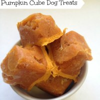 3 Easy Dog Treats You Can Make Yourself