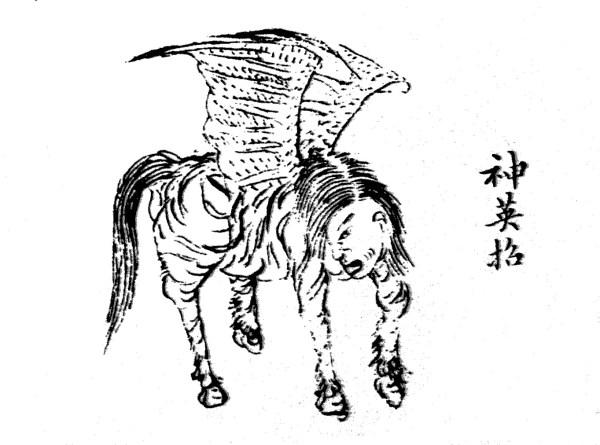 ying zhao shen