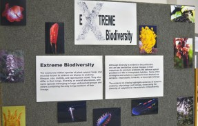 "Theme ""Extreme Biodiversity"" display in the Auditorium. 2011"