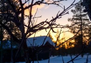 LapplandBeitragsbild-