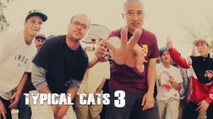 Typical Cats &#8211; &#8220;The Crown&#8221; Video