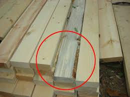 jenis kayu terbaik