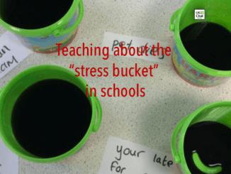Stress_Bucket (1)