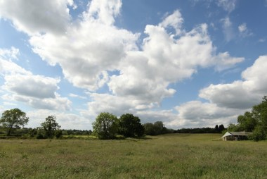 field-views-from-badgers-sett
