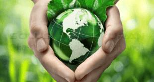 Pertanian Modern Di Indonesia Saat Ini Dan Di Masa Depan