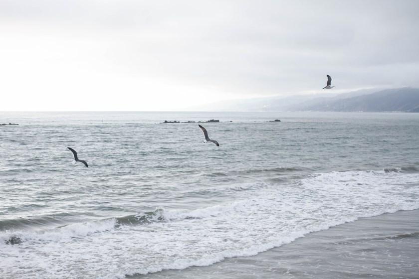 Winter-ocean-1473