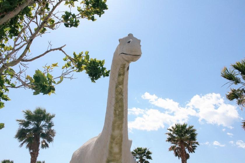 palm-springs-desert-3641