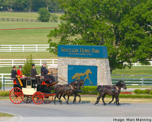kentucky-horse-park