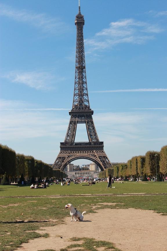 Ulubione przepisy w Paryżu
