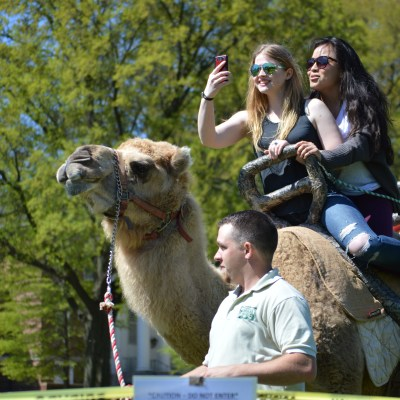 Students take a selfie while riding a camel, the most popular attraction at Israel Fest. Dovid Fisher/Mitzpeh